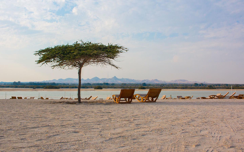 Beaches in Abu Dhabi