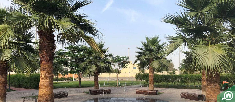 living in mohammed bin zayed city