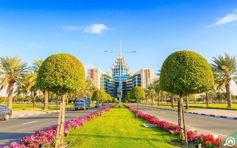 منطقة واحة دبي للسيليكون