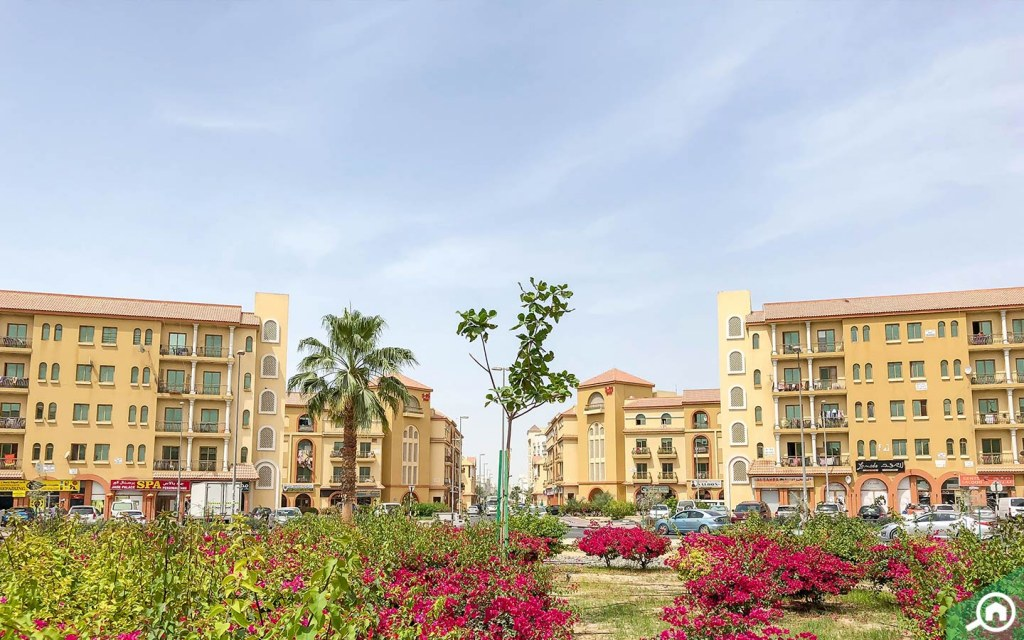 Apartments for rent in International City Clusters