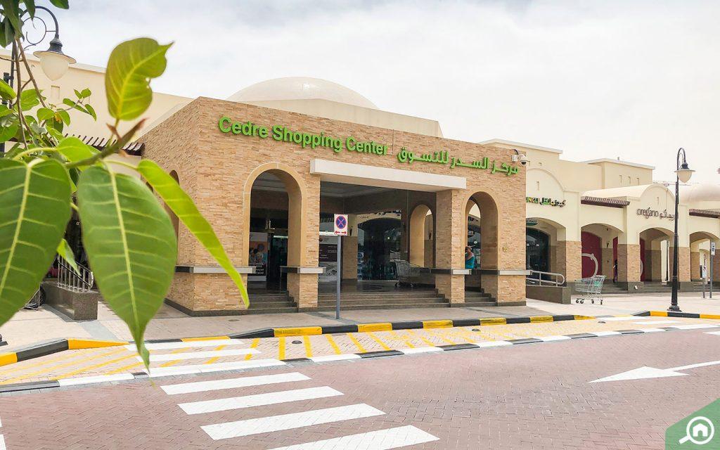 cedre shopping center in silicon oasis
