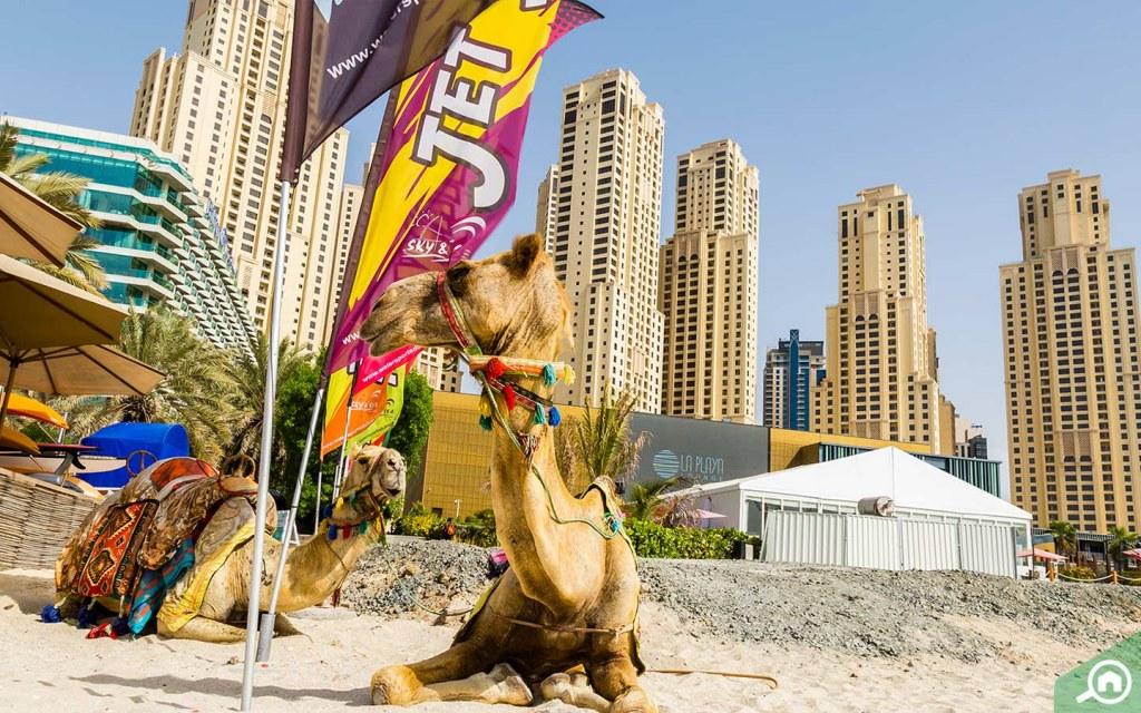 JBR Beach Near Dubai Sports City