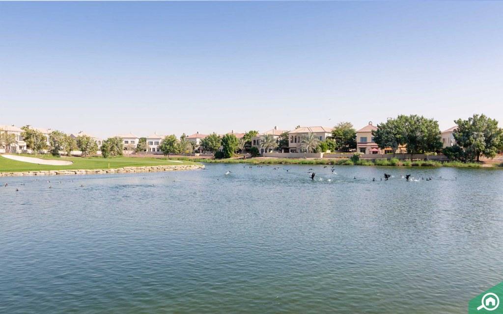 Lake at Jumeirah Golf Estates