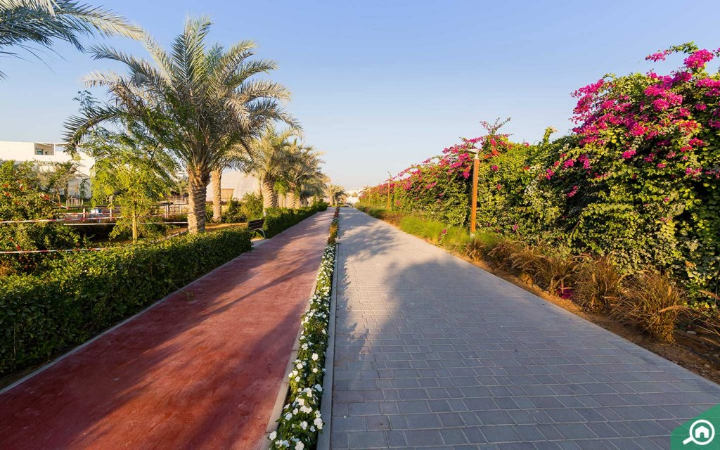 Running Trail in The Sustainable City