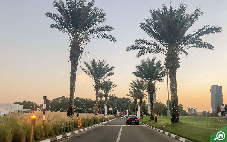 roads in emirates golf club dubai