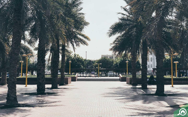 Karama park