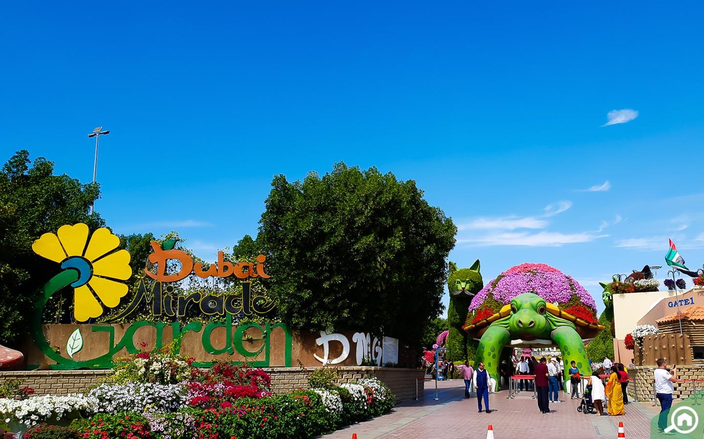 Dubai Miracle Garden landmark near Hayat Townhouses