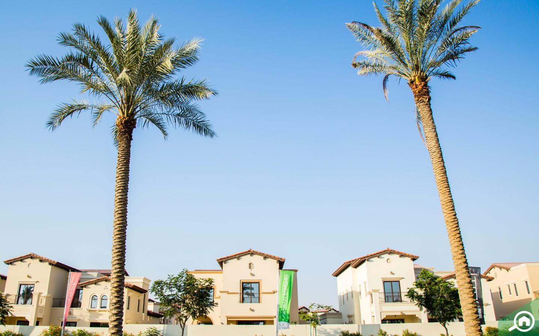 Arabian Ranches 2 houses