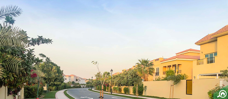 دبي لاند