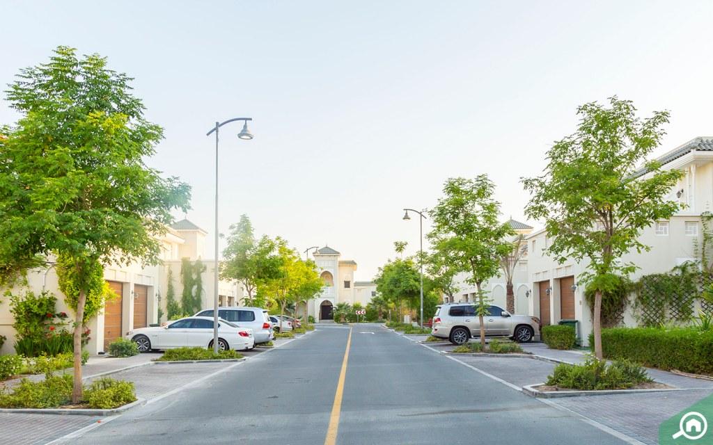Nad Al Hamar street view