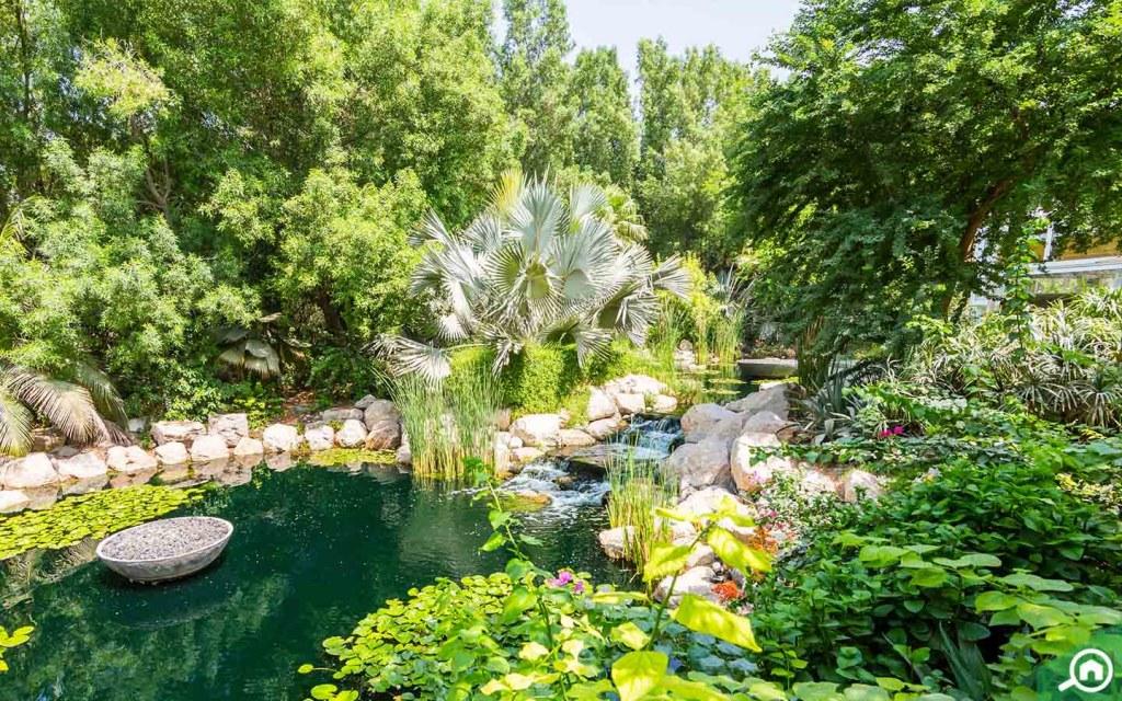 Water and greenery in Al Barari