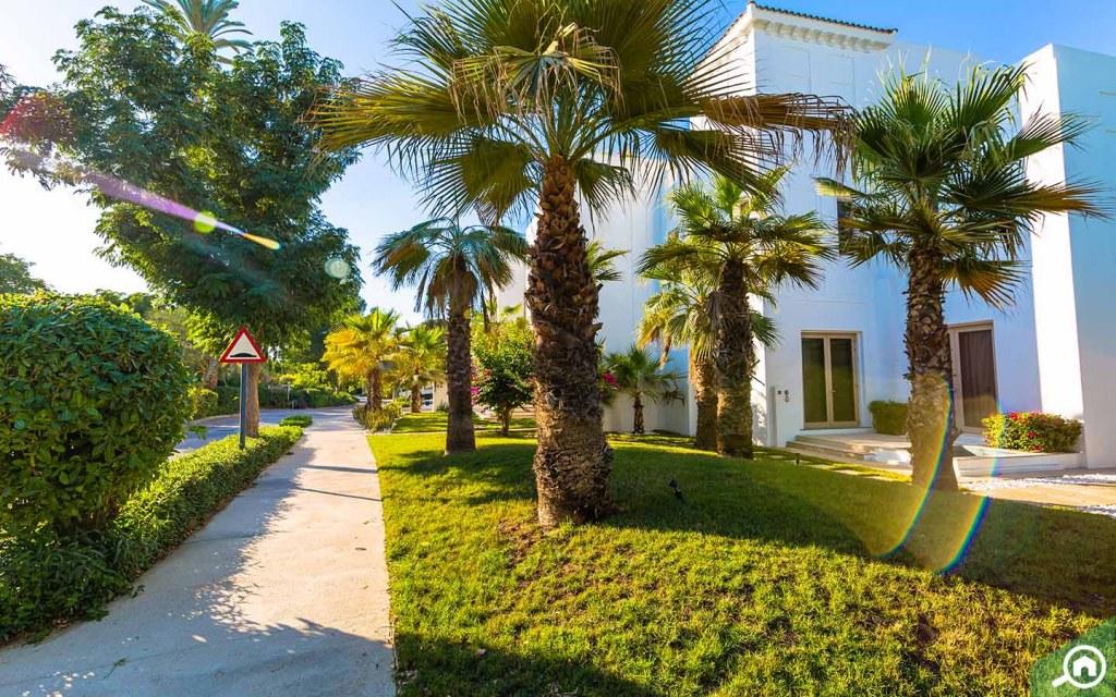 Greenery in Al Barari