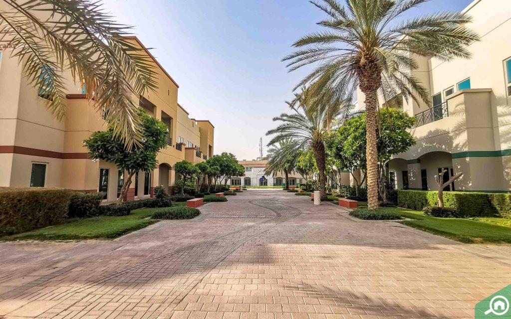 Street view of Academic City
