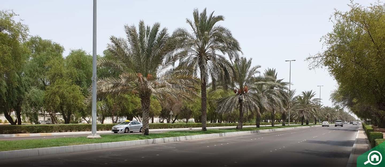 Al Aman Abu Dhabi