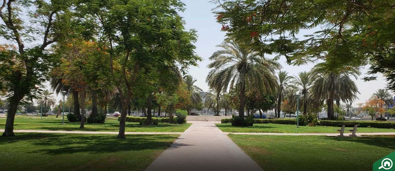 al khabisi area guide