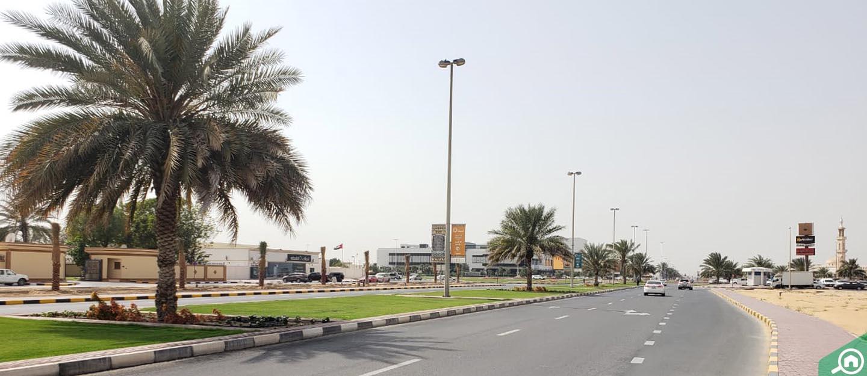 muwaileh area guide