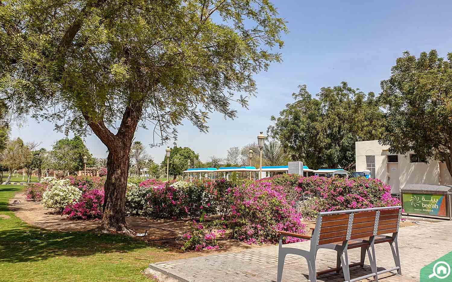 Park in Al Gharayen