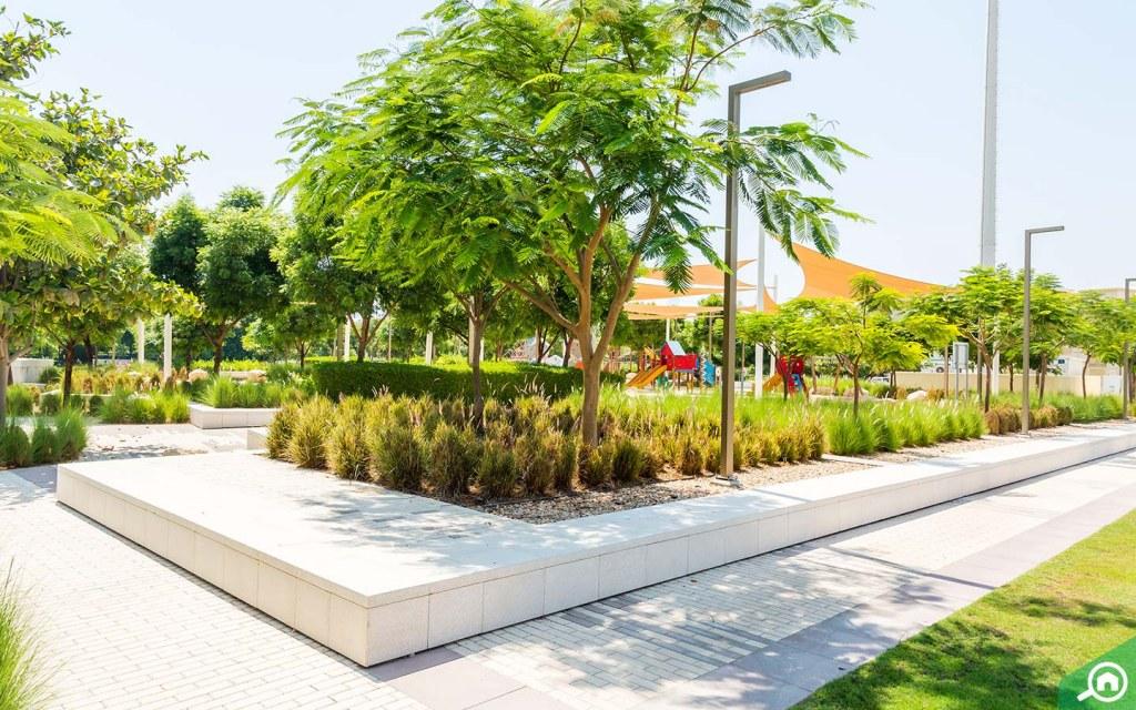 grassy parks in Emirates Hills