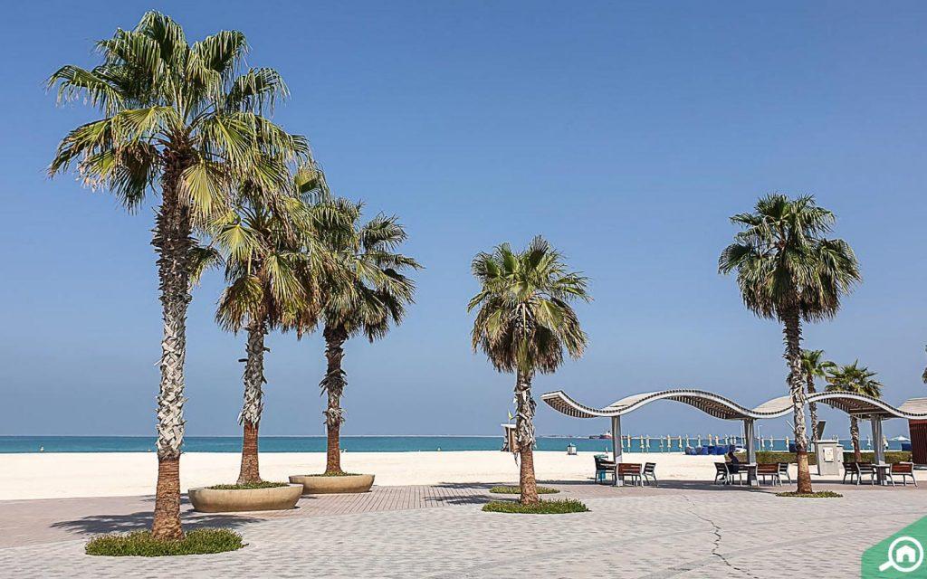 jumeirah beach near world trade centre