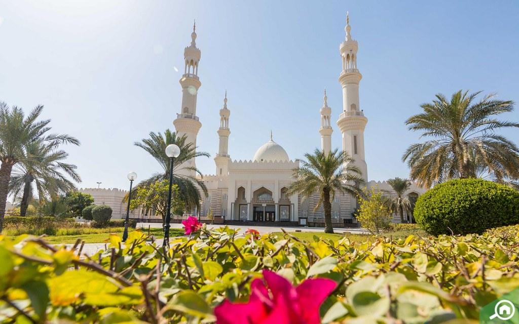 sheikh zayed mosque in al jurf