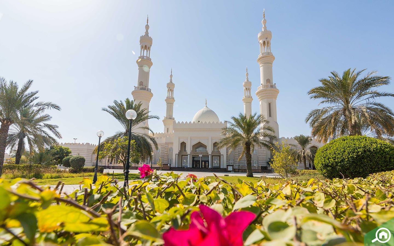 جامع الشيخ زايد في الجرف