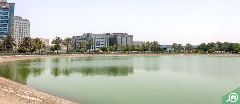 Al Nahda Dubai Area Neighbourhood Guide Bayut