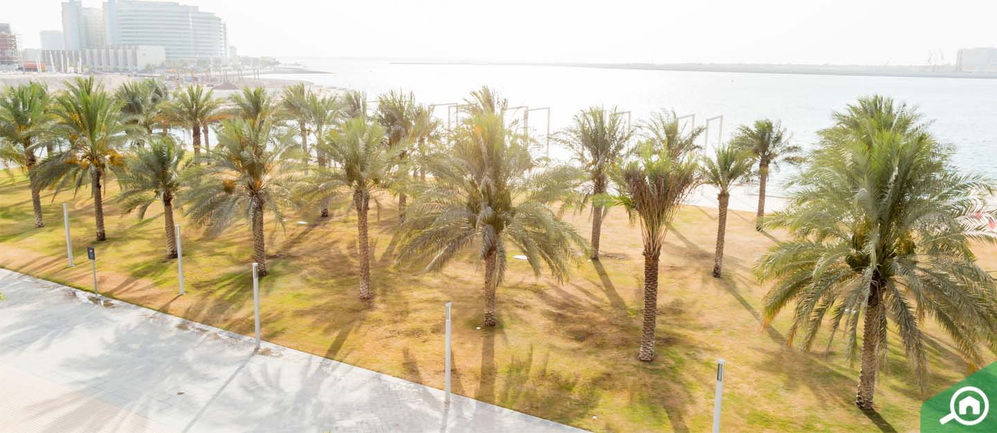 living in al zeina, al raha beach