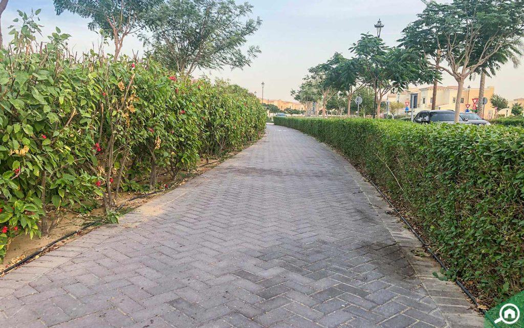 Cycle tracks in Mira, Reem