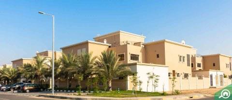 Zone 24, Mohammed Bin Zayed City