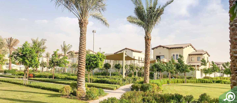مجمع ريم المرابع العربية 2