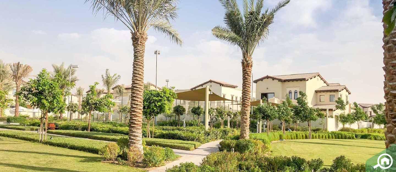 living in alvorada arabian ranches