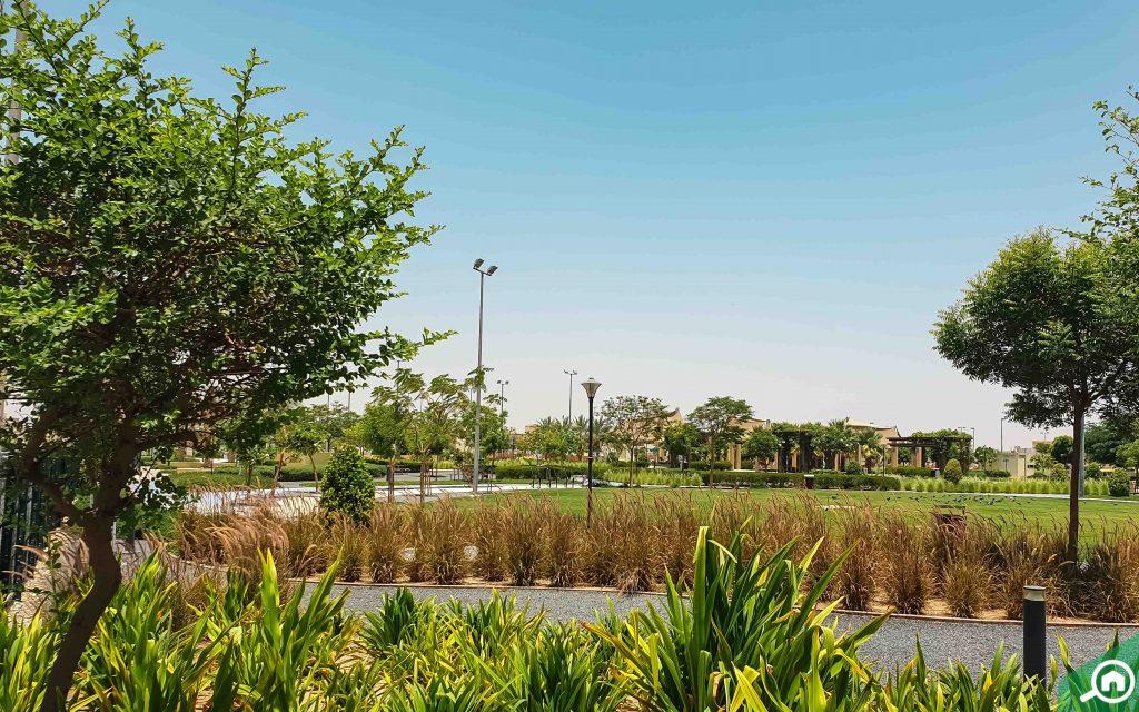 mbz city near baniyas abu dhabi