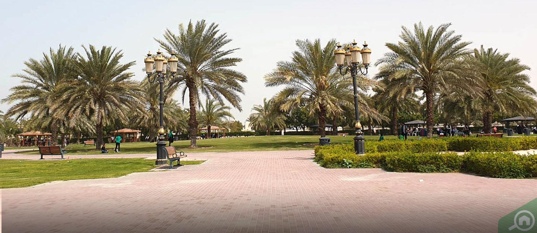 al zahya ajman area guide