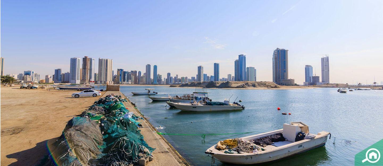 Al Fisht cover photo