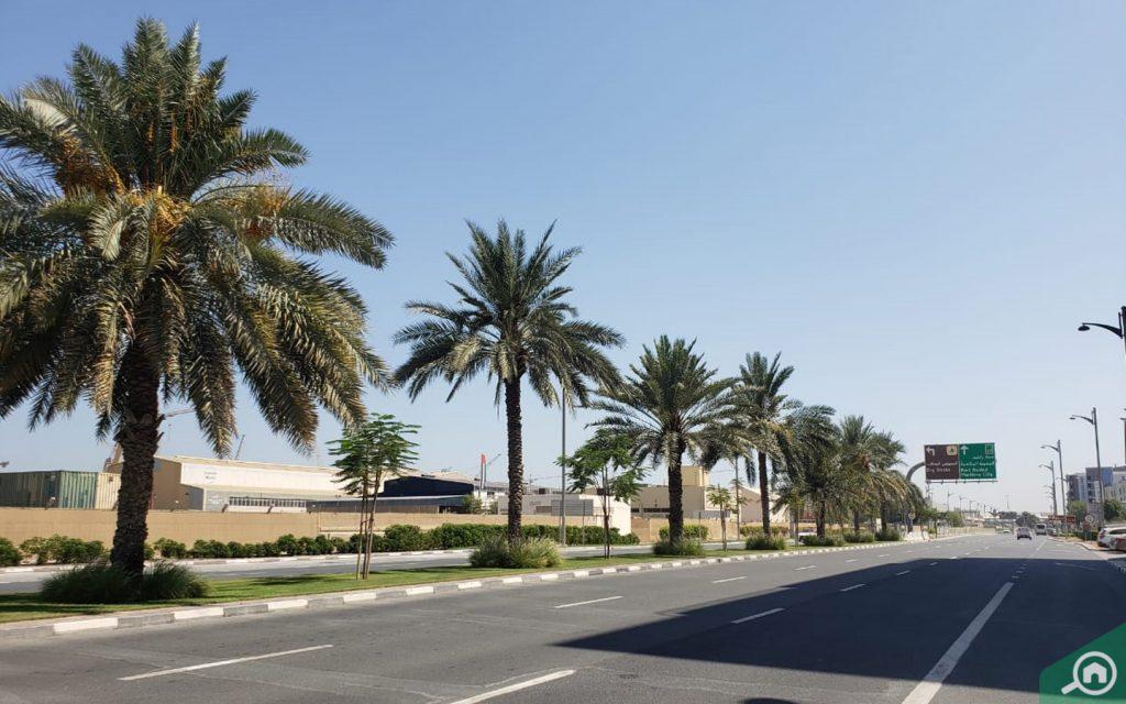Al Mina Street View