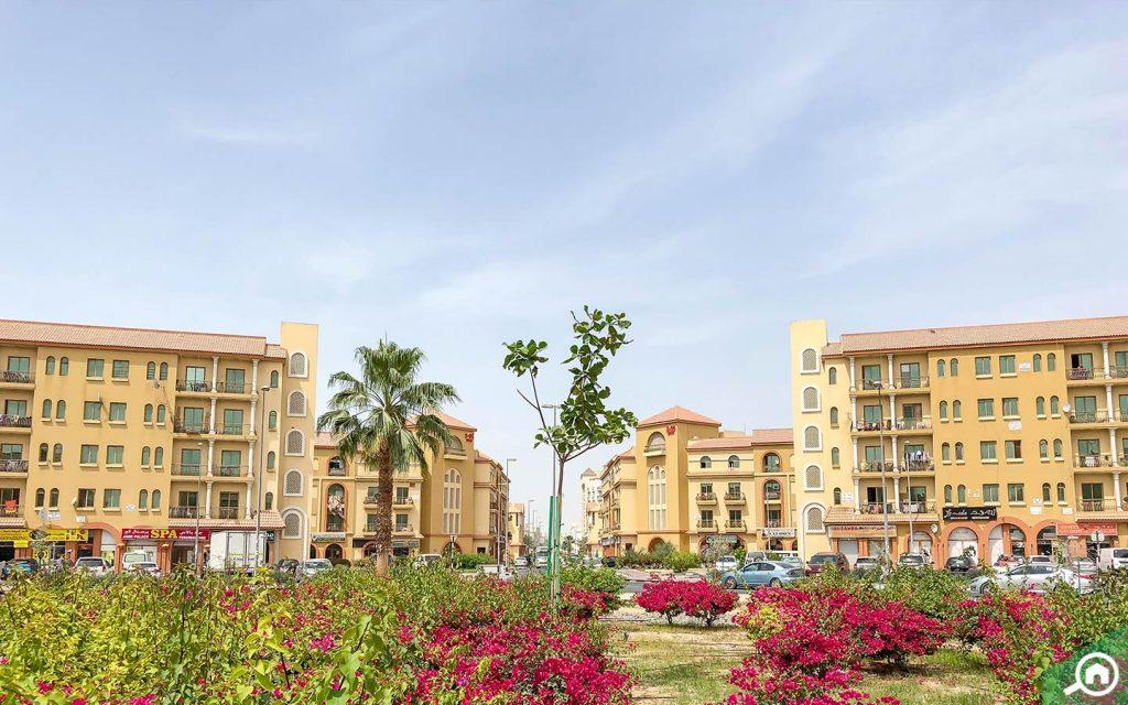 international city near al warsan