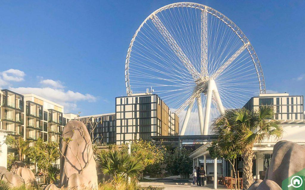 Observation wheel Ain Dubai