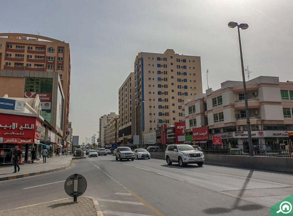 شارع فرعي يضم مرافق وخدمات عديدة
