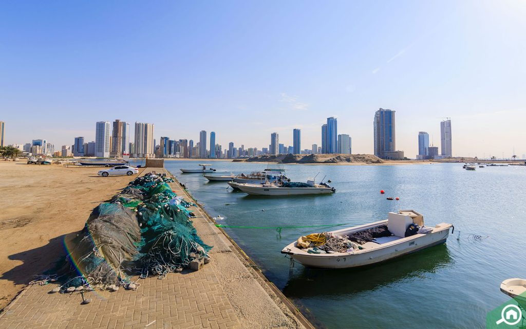 beach near al darari