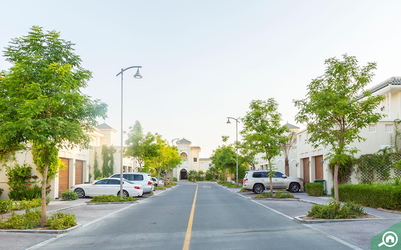شارع فرعي وسيارات أمام الفلل