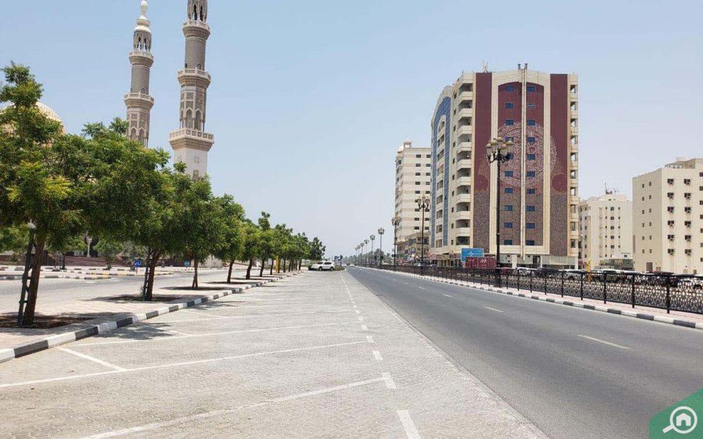 شارع رئيسي في المنطقة