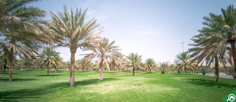 Al Sarouj, Al Ain