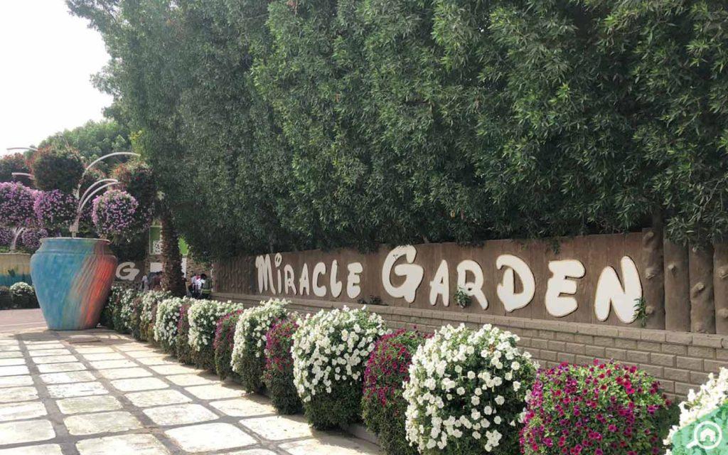 Entrance of Miracle Garden