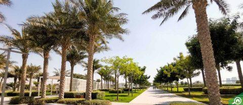 Mamsha Al Saadiyat, Abu Dhabi