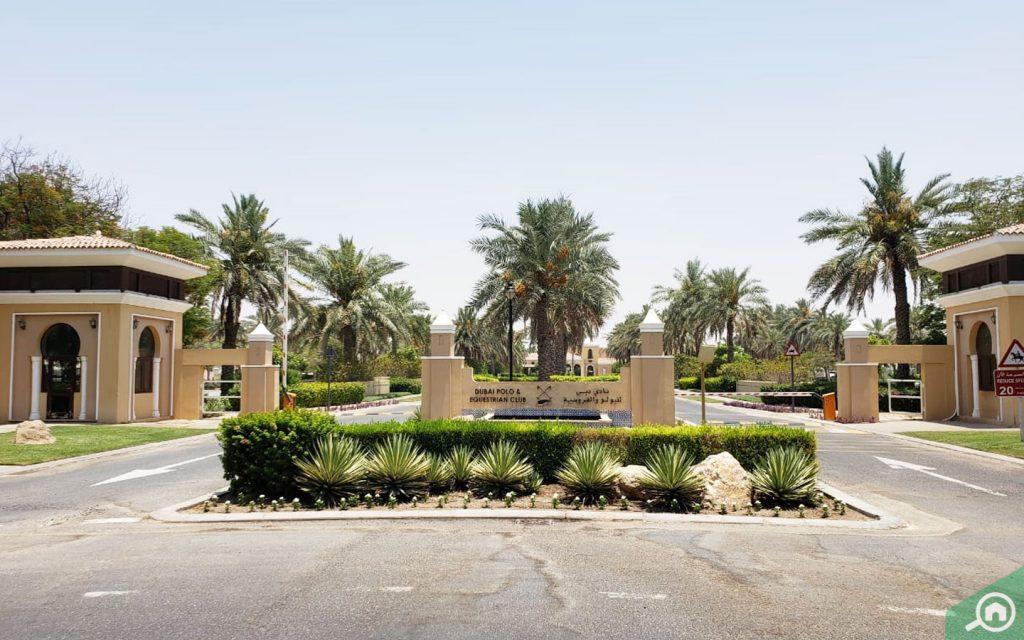 نادي دبي للبولو والفروسية