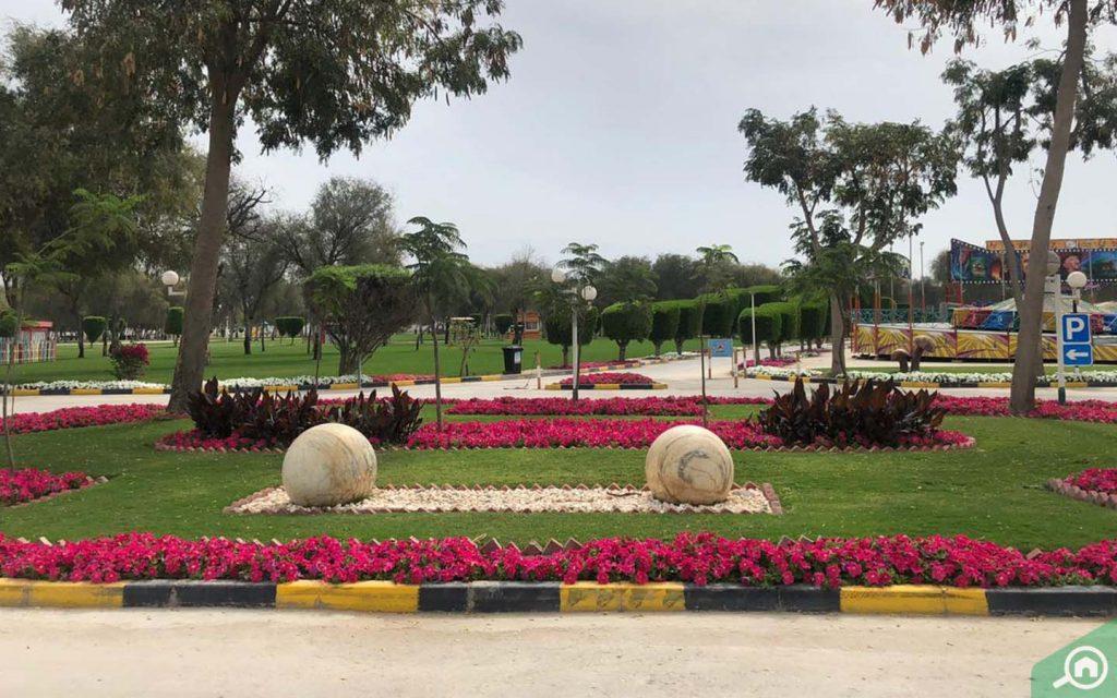 حديقة صقر