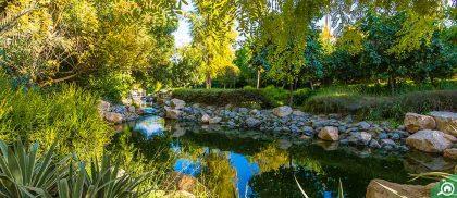 The Reserve, Al Barari