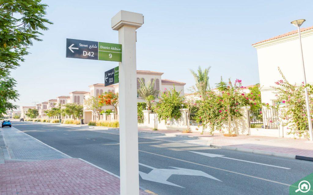 شوارع مثلث قرية جميرا
