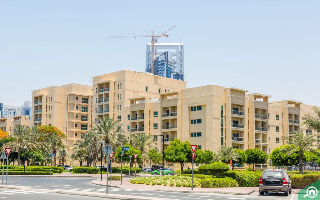 المباني السكنية في الروضة