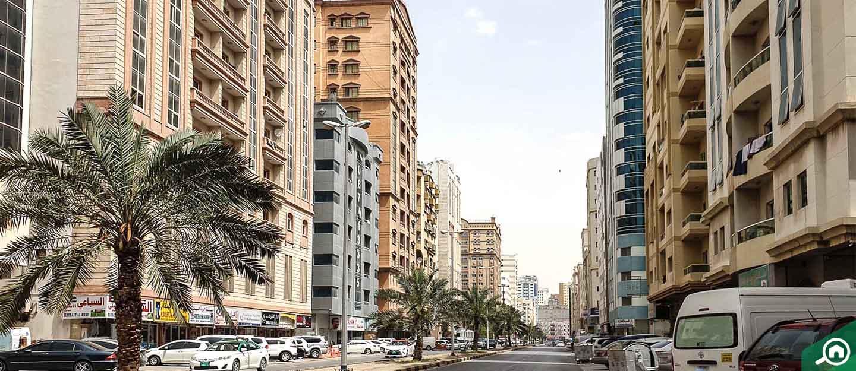 شارع الشيخ خليفة بن زايد عجمان